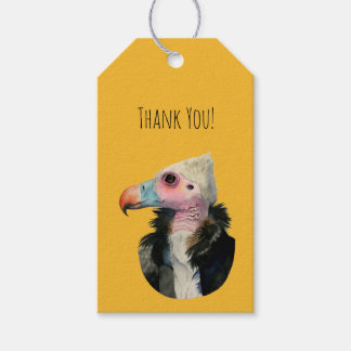White-Headed Vulture Watercolor Painting Gift Tags