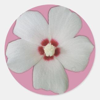 White Hibiscus Flower Classic Round Sticker