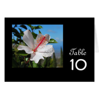 White Hibiscus Table Card