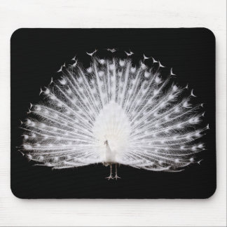 White hole sparrow mousepads