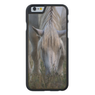White Horse Carved® Maple iPhone 6 Slim Case