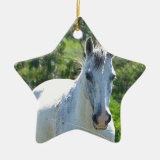 White horse. ceramic star decoration