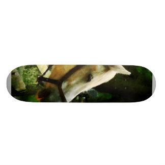 White Horse Closeup Custom Skateboard