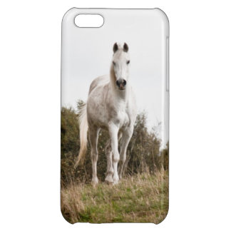 White horse cover for iPhone 5C