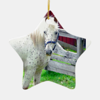 White Horse Ceramic Star Decoration