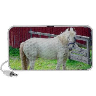 White horse doodle speaker