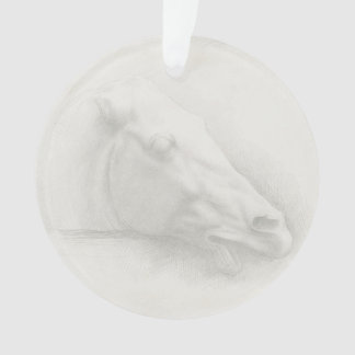 White Horse Head Vintage Portrait Drawing