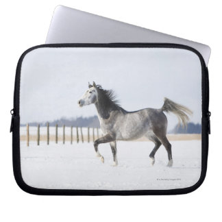 white horse in winter laptop sleeve