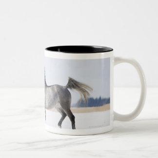 white horse in winter Two-Tone coffee mug