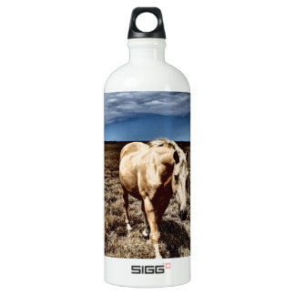 White Horse.JPG SIGG Traveller 1.0L Water Bottle