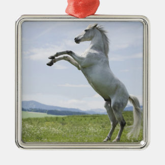 white horse jumping on meadow christmas ornament