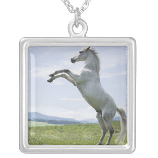 white horse jumping on meadow silver plated necklace
