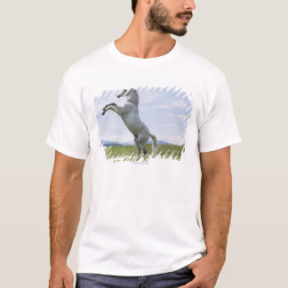 white horse jumping on meadow T-Shirt