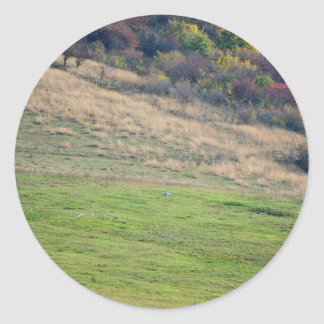 White horse on a green Hill Classic Round Sticker
