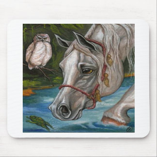 WHITE HORSE Owl Pond Mousepad