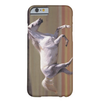 White horse running in field barely there iPhone 6 case