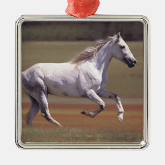 White horse running in field Silver-Colored square decoration