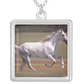 White horse running in field silver plated necklace