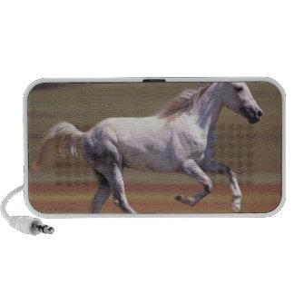 White horse running in field laptop speakers
