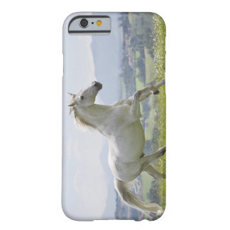 white horse running on meadow barely there iPhone 6 case