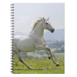 white horse running on meadow spiral notebook
