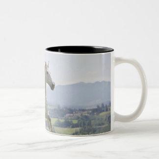 white horse running on meadow Two-Tone coffee mug