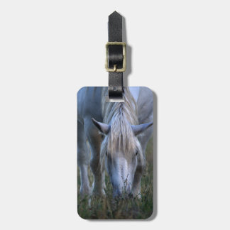 White Horse Tags For Luggage