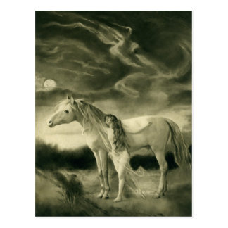 white horse woman post card