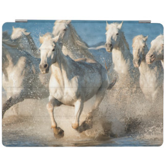 White horses of Camargue, France iPad Cover
