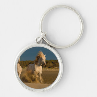 White Horses Running On Beach | Camargue, France Key Ring