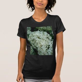 White Hortensia Flowers Shirt