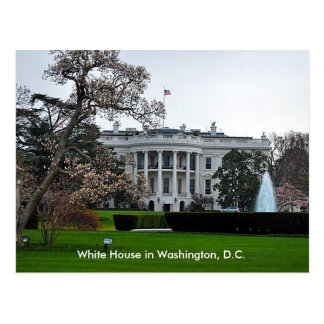 White House, Washington, DC Postcard