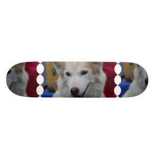 White Husky Skateboard