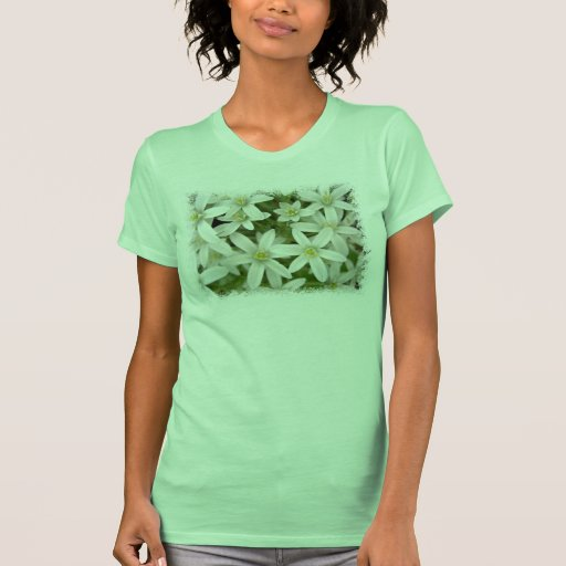White Hyacinth Ladies T-Shirt Green