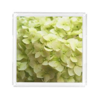 White Hydrangea flower background Acrylic Tray