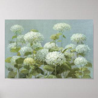 White Hydrangea Garden Poster