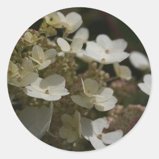 White Hydrangea Round Sticker
