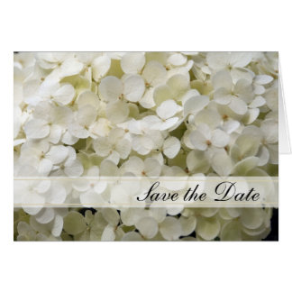 White Hydrangea Wedding Save the Date Announcement