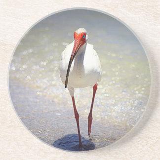 White Ibis Strut Coasters