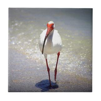 White Ibis Strut Small Square Tile