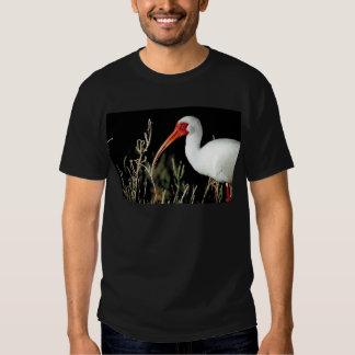 White ibis tee shirt