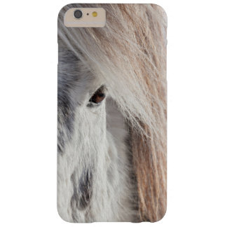 White Icelandic Horse face, Iceland Barely There iPhone 6 Plus Case