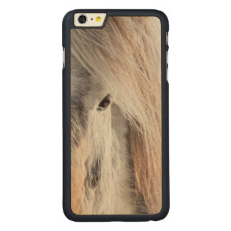 White Icelandic Horse face, Iceland Carved Maple iPhone 6 Plus Case