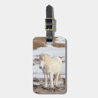 White Icelandic Horse Portrait Luggage Tag