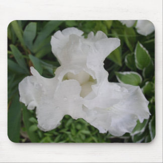 White Iris Mouse Mat