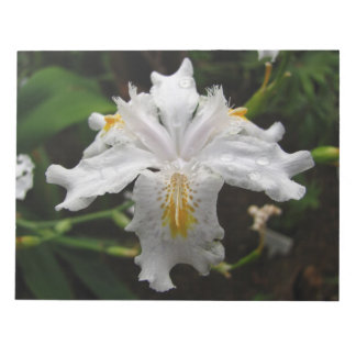 White Iris Notepad