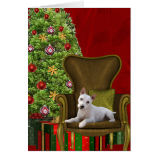 White Jack Russell Christmas Card