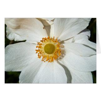 "White ""Japanese Anemone"" Card"