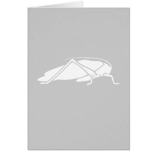 White Katydid Graphic Greeting Card