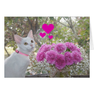 White Kitten and Pink Carnations Valentine Card